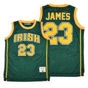 Lebron James Los Angeles Lakers High School Basketball #23 Green Jersey